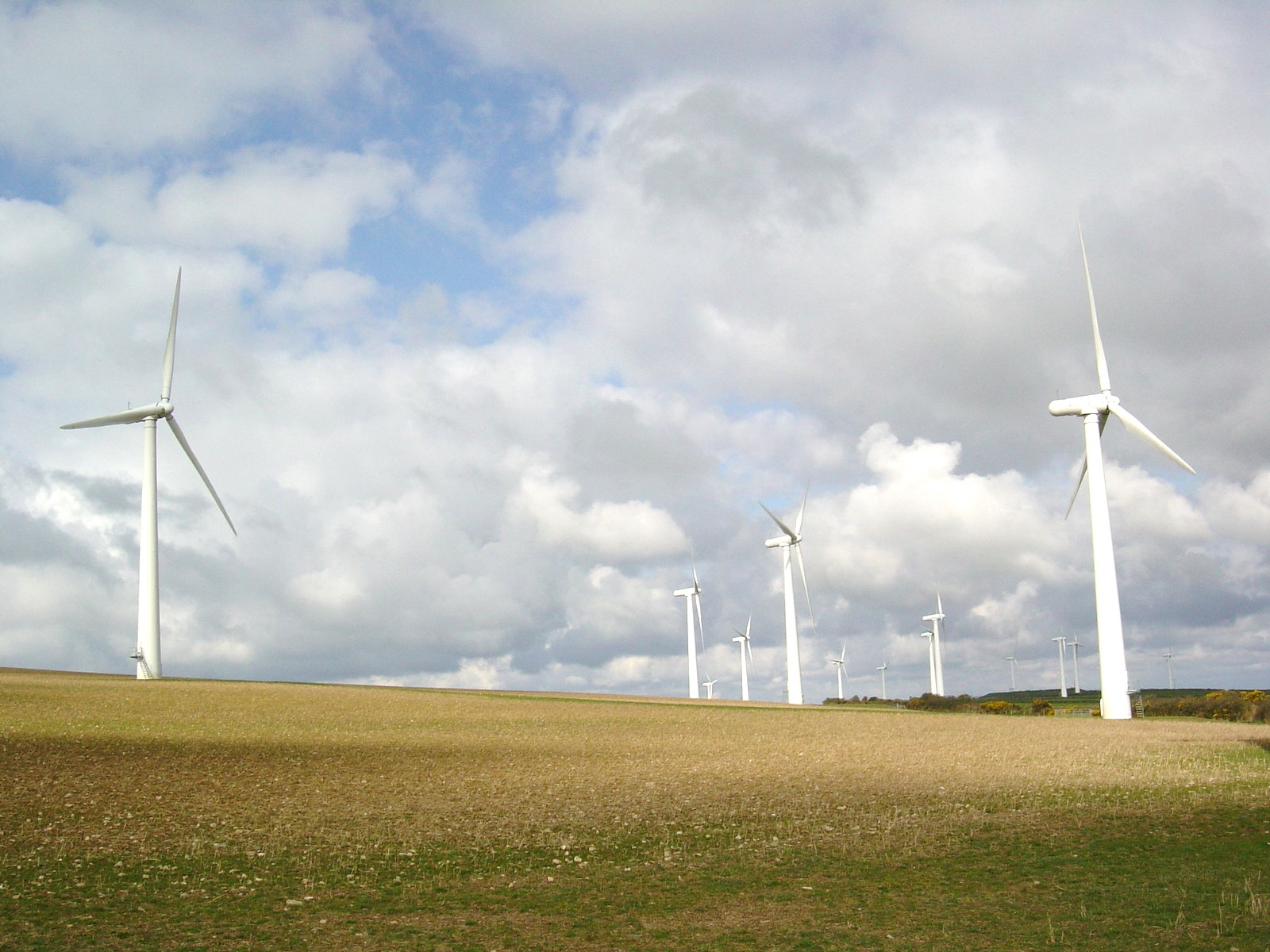 Making an Impact: Researcher Sarah Mills gives Michigan communities the straight story on wind turbines